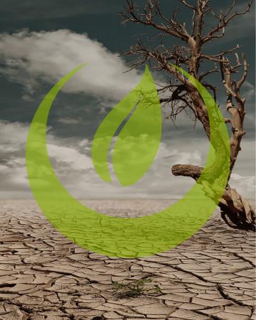 15.04 | Klima – Wandel oder Krise?